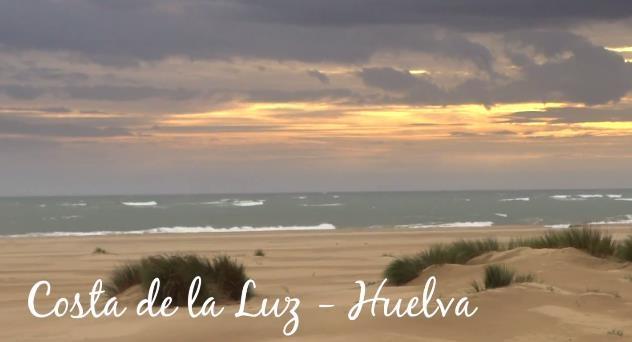 Gamba blanca, el tesoro del mar de Huelva