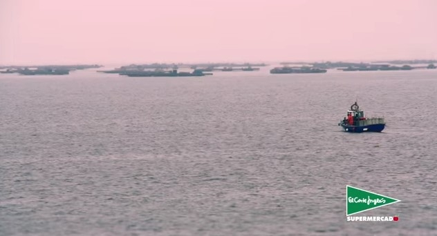 Marisco, gallego, cuna del marisco