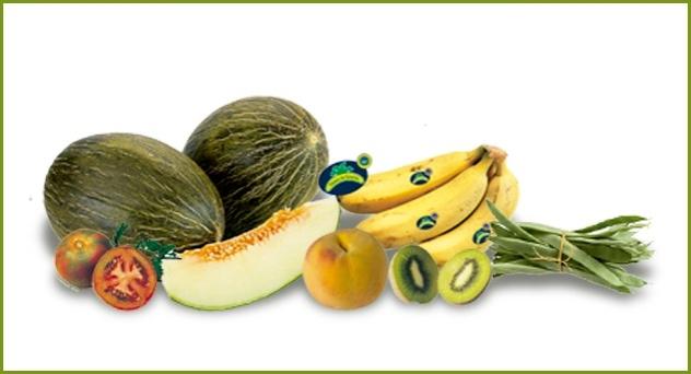 Frutas y verduras del mes de Septiembre