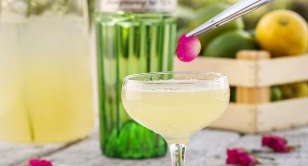 Coctel Frangance Martini
