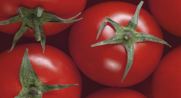 Tomates/