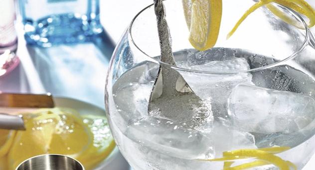 Gin tonic, pareja perfecta