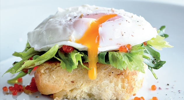 Huevos de gallinas libres de jaulas, un placer inmenso