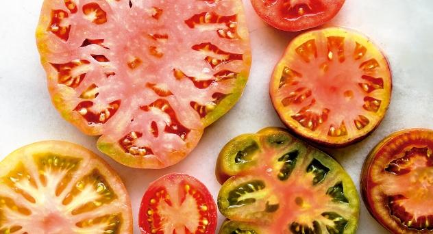 Aquí hay tomates
