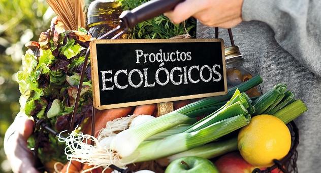 Así son nuestros productos ecológicos