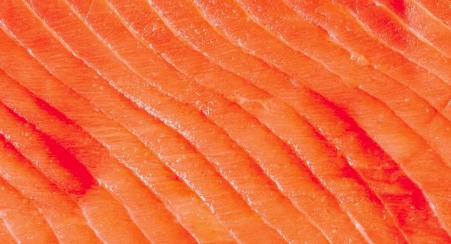Salmón de Alaska, está en su punto
