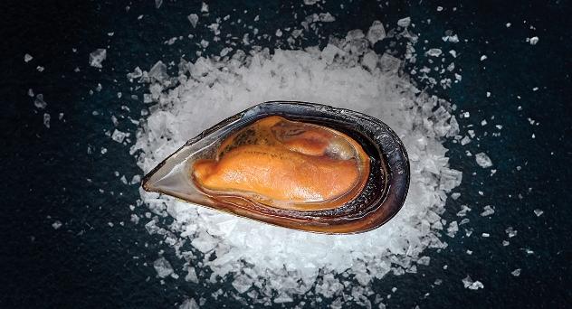 Mejillones, tesoros del mar