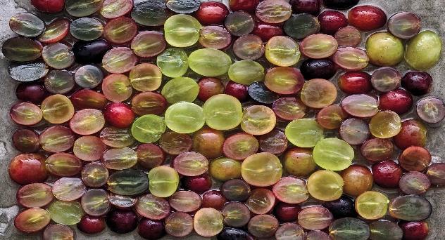 Uvas exclusivas